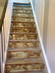 Bodenarbeiten-1.Treppenstufen-Alt