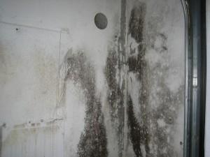 Sanierung-11.Garage-Alt